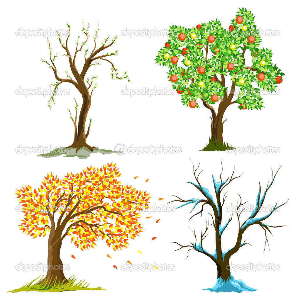 Trees in seasons — Imagen vectorial #1141694