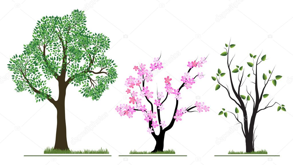 Nature tree collection  Stock Vector #1153750