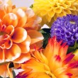 Background with two dahlias — Stock Photo #1092161
