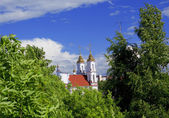 Landscape with Voskresensky church in Vi — Stock Photo