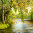 The wood river — Stock Photo