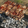 Meat kebab food grilled on barbecue — Stock Photo #1062289