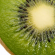 Kiwi fruit — Stock Photo #1065976