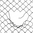 Wire fence — Stock Photo #1298868