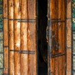 Church door — Stock Photo #1315957
