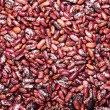 Bean background — Stock Photo
