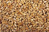 Doce de semente — Fotografia Stock