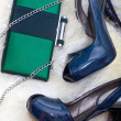 Stock Photo: Women shoes and clutch