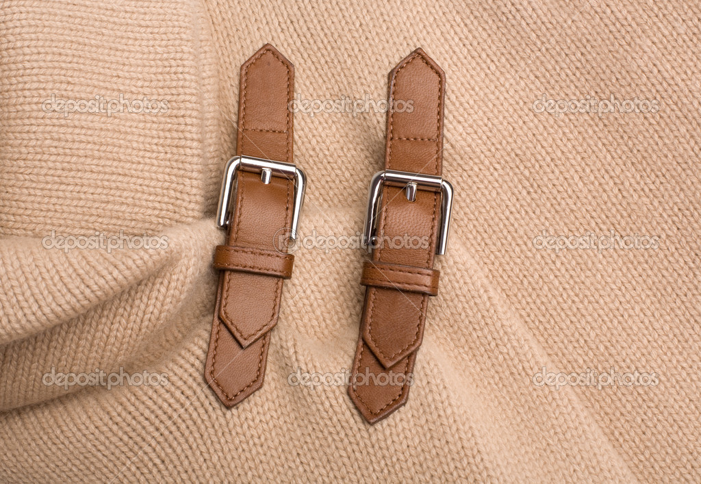 Buckles  Stock Photo #1115710