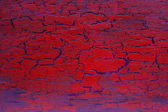 Red crackle texture — Stock Photo