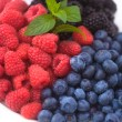 Blueberry, raspberry and blackberry — Stock Photo