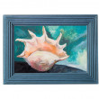 Oil painted shell in the blue frame — Stock Photo