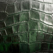Crocodile textured leather — Stock Photo