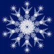 snowflake — Stock Photo #1062217
