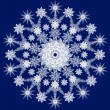 snowflake — Stock Photo #1062219