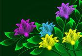 Color transparent flowers — Stock Photo