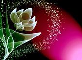 Flores transparentes — Foto de Stock