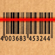 Royalty-Free Stock Photo: Barcode and laser reader