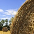 Stock Photo: Bale and blue sky