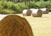Closeup of hay bale — Stock Photo