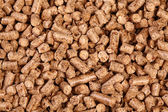 Natural pellet — Stock Photo