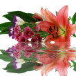 Lilies and their reflection — Stock Photo #1399592