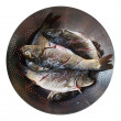 Fresh Fish in a Sieve — Stock Photo