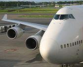 La nariz del avión y ala — Foto de Stock