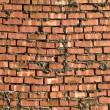 Sloppy Brick Wall - Stock Photo
