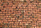 Sloppy Brick Wall — Stock Photo