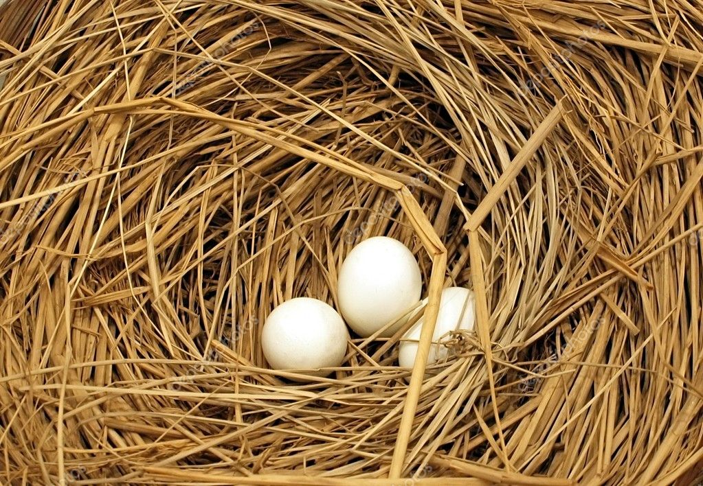 Three freshly laid chicken eggs in a nest of straw; useful as Easter theme — ストック写真 #1515869