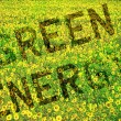 Green Energy Concept - Foto de Stock
