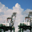 Large Container Cranes — Stock Photo