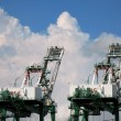Large Container Cranes — Stock Photo #1937478