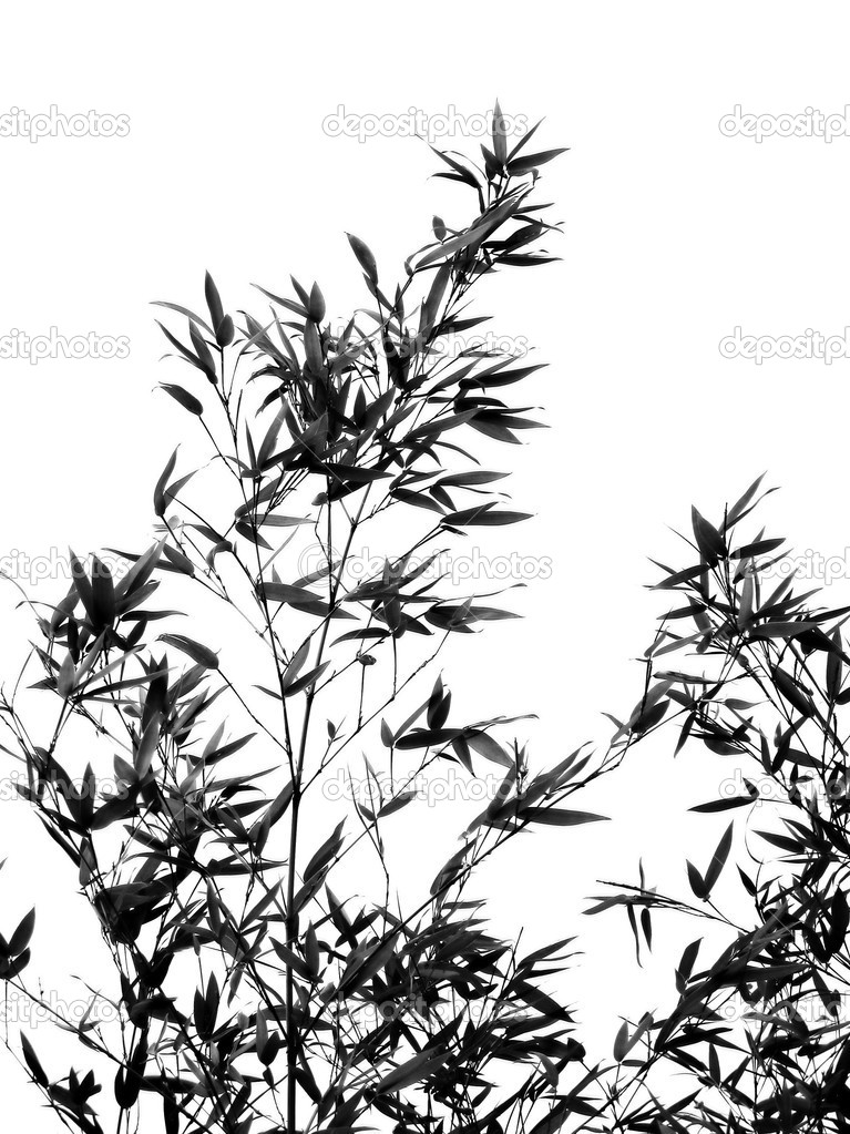 -- seen as a silhouette, resembling a Chinese painting — Stock Photo #1939304