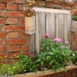 Pretty Garden Wall — Stock Photo