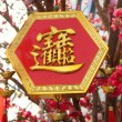 Stock Photo: Chinese New Year Ornament