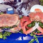 Shellfish — Stock Photo #2254400