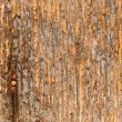 Royalty-Free Stock Photo: Old grungy wood background texture