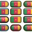 Royalty-Free Stock Photo: Twelve buttons of the Flag of Cameroon