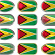Royalty-Free Stock Photo: Twelve buttons of the Flag of Guyana