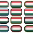 Royalty-Free Stock Photo: 12 buttons of the Flag of hungary