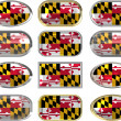 Stock Photo: 12 buttons of Flag of Maryland