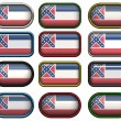 12 buttons of Flag of Mississippi — Stock Photo #1197135
