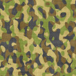 Royalty-Free Stock Photo: Camouflage cloth