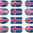 12 buttons of the Flag of Iceland — Stock Photo #1197459