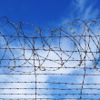 Restrictions barbed wire blue sky — Stock Photo