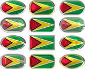 Twelve buttons of the Flag of Guyana — Stock Photo