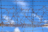 Barbed wire blue sky — Stock Photo