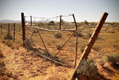 Old desert fence — Stock Photo
